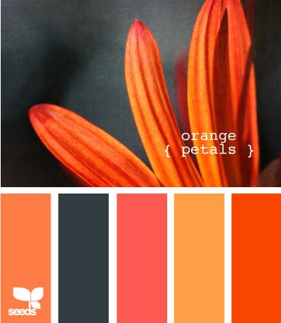 OrangePetals610